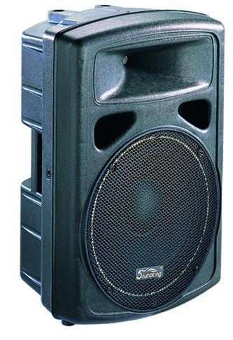 """רמקול מוגבר """"10 SoundKing"""